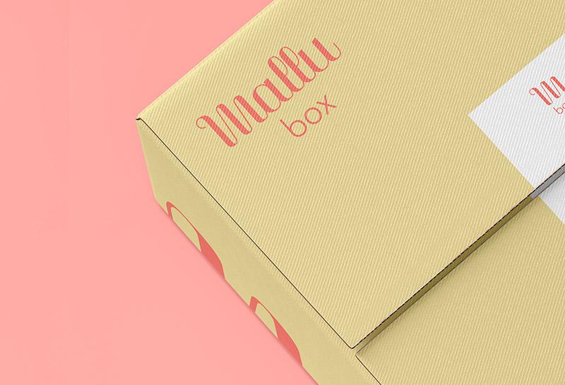 Detalhe Embalagem Caixa - Mallubox